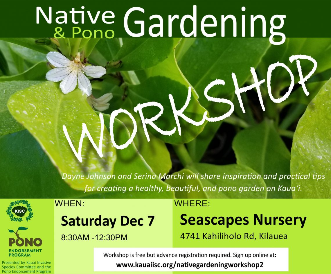 Native Gardening Workshop – Repeat Opportunity